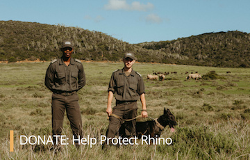 Donate: Help Protect Rhino